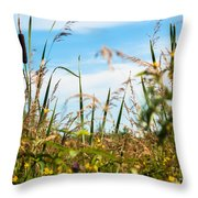 Colors Of Summer Throw Pillow