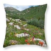 Colors Of The Rainbow - Colorado Mountain Summer Throw Pillow