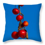 Colors Of Winter - Featured 3 Throw Pillow