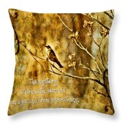 Colossians 1 26 Throw Pillow