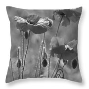 Colour Blind Poppies 1 Throw Pillow
