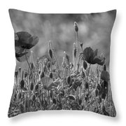 Colour Blind Poppies 2 Throw Pillow