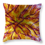 Colour Convolution Throw Pillow