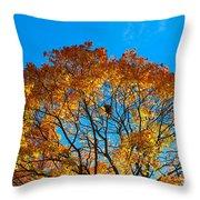 Colourful Autumn Tree Against Blue Sky Throw Pillow