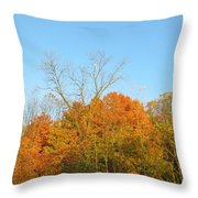 Colourful Time Throw Pillow