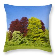 Colourful Trees Throw Pillow