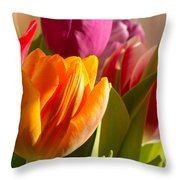 Colourful Tulips In Sunlight Throw Pillow