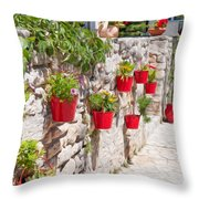 Colourful Flower Pots Throw Pillow