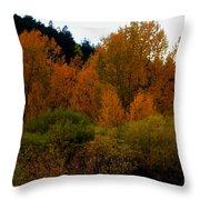 Colours In A Season Throw Pillow