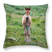 Colt Mustang 1 Throw Pillow