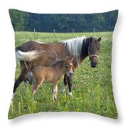 Colt On The Pumpkinvine Throw Pillow