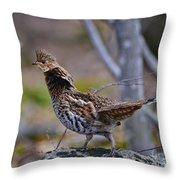 Coltsfoot Ruffed Grouse Throw Pillow
