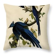 Columbia Jay Throw Pillow