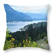 Columbia Lake Which Is Source Of The Columbia River-bc  Throw Pillow