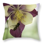 Columbine And The Bee Throw Pillow
