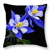 Columbine Duet Throw Pillow