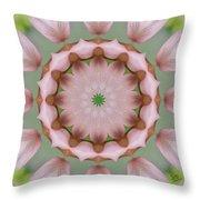 Columbine Kaleidoscope Throw Pillow