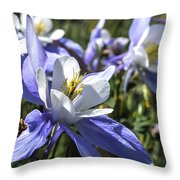 Columbine Wildflowers Throw Pillow