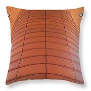 Column Of Strength Throw Pillow by Randall Weidner