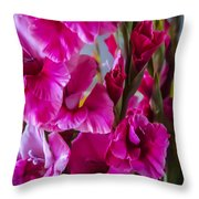 Columns Of Colour Throw Pillow