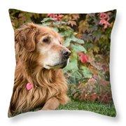 Comanche Autumn - Golden Retriever - Casper Wyoming Throw Pillow