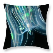 Comb Jelly Throw Pillow