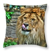 Come A Lil Closer...mmmmm... Throw Pillow