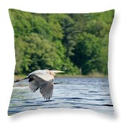 Come And Go Blues Throw Pillow