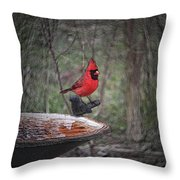 Come Here Often 2012-02-22 Throw Pillow