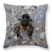 Hey You Come Here  Throw Pillow