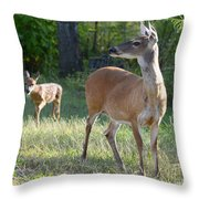 Come On My Babe Throw Pillow
