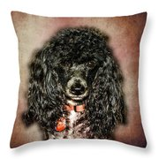 Come On Make My Day Throw Pillow