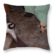 Come Out Throw Pillow