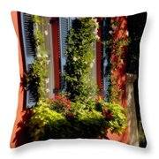 Come To My Window Throw Pillow by Karen Wiles