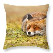 Comfortably Fox Throw Pillow