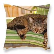 Comfy Kitty Throw Pillow