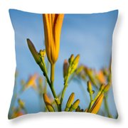 Coming Attractions Throw Pillow