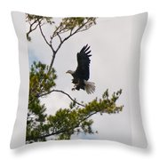 Coming In For A Landing Throw Pillow
