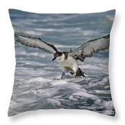 Coming In For Landing... Throw Pillow