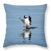 Coming In On A Tail And A Prayer Throw Pillow