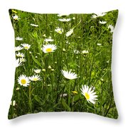 Coming Up Daisy's Throw Pillow