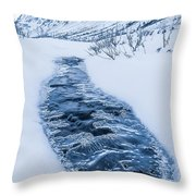 Coming Up For Air Throw Pillow