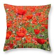 Commemorative Poppies Throw Pillow
