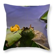 Comming Soon Throw Pillow