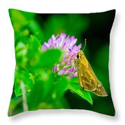Common Banded Skipper Throw Pillow