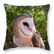 Common Barn Owl 10 Throw Pillow