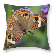 Common Buckeye Butterfly Throw Pillow
