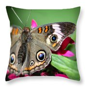 Common Buckeye Junonia Coenia Throw Pillow