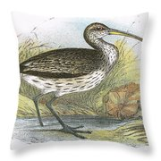 Common Curlew Throw Pillow