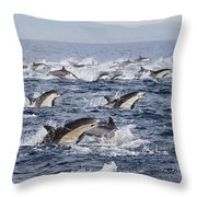 Common Dolphins Surfacing San Diego Throw Pillow by Richard Herrmann